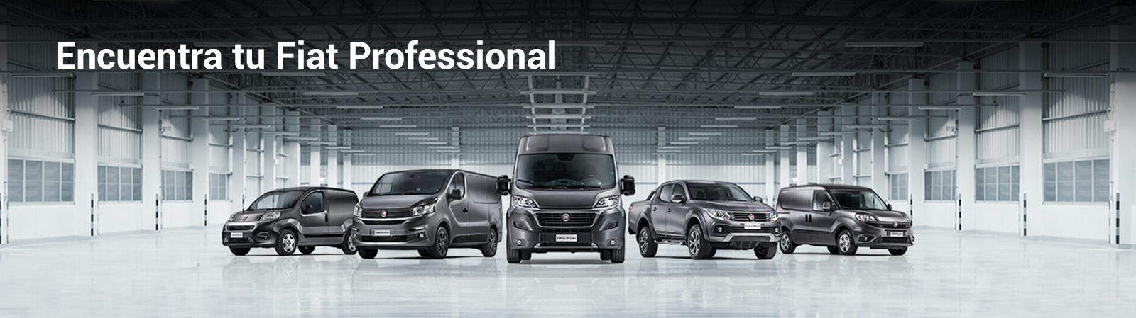 banner-fiat-professional